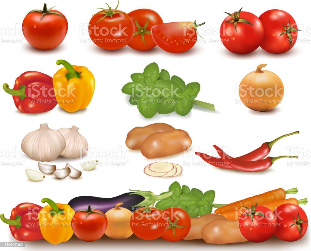 Vegetables Set royalty-free stock vector art