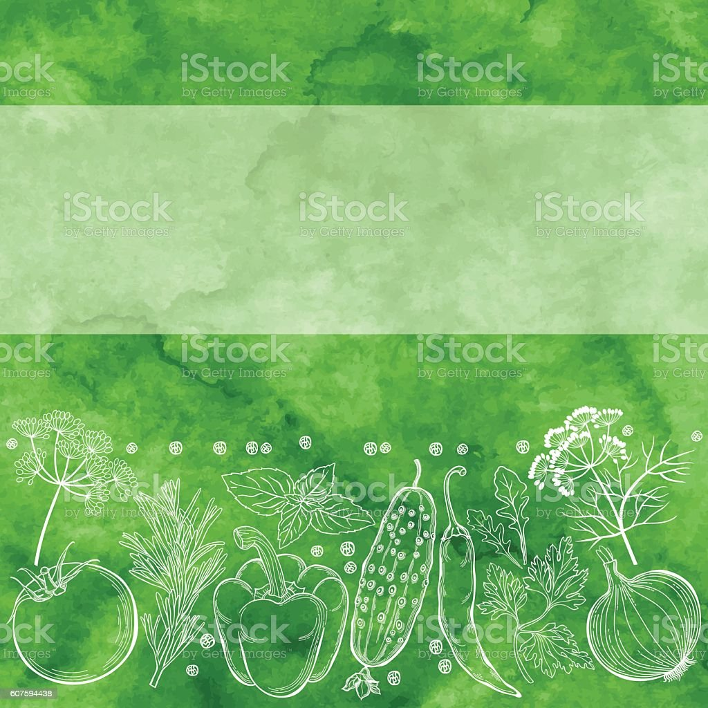 Vegetables, spices and herbs. Illustration  on a green watercolor background. vector art illustration