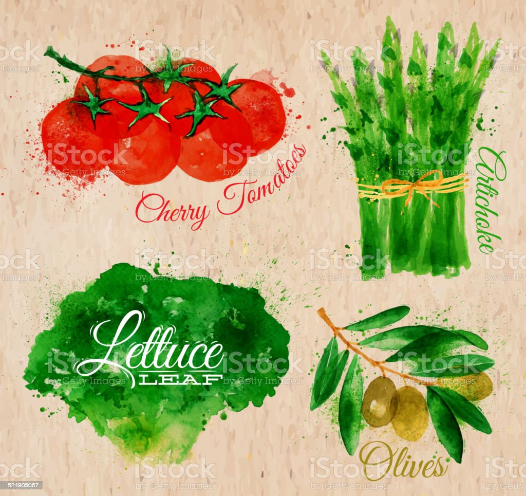 Vegetables watercolor lettuce, cherry tomatoes, asparagus, olives on kraft paper vector art illustration
