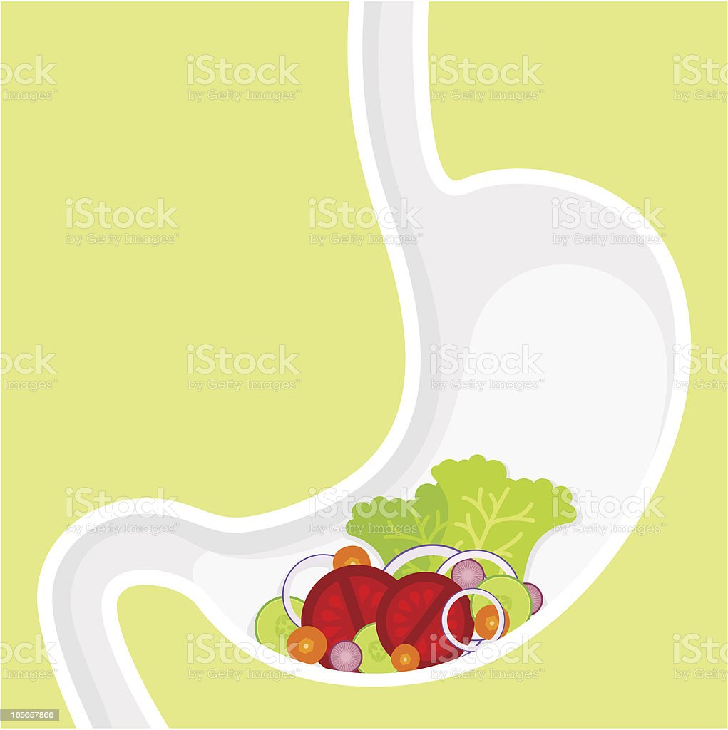 Vegetarian diet vector art illustration
