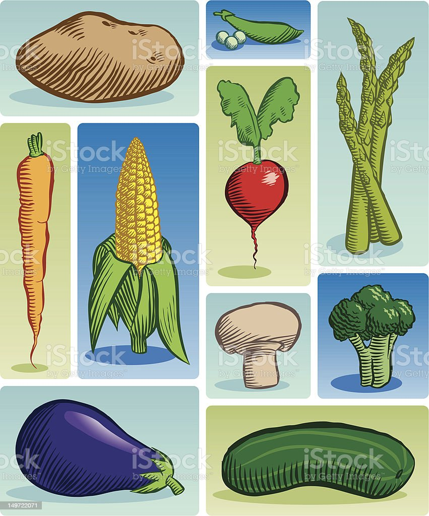 Veggie Group (Color) royalty-free stock vector art