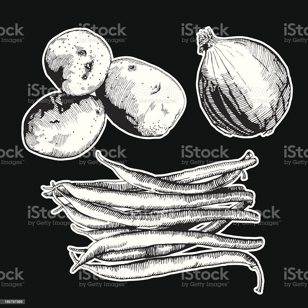 Veggies, Ink Drawing royalty-free stock vector art