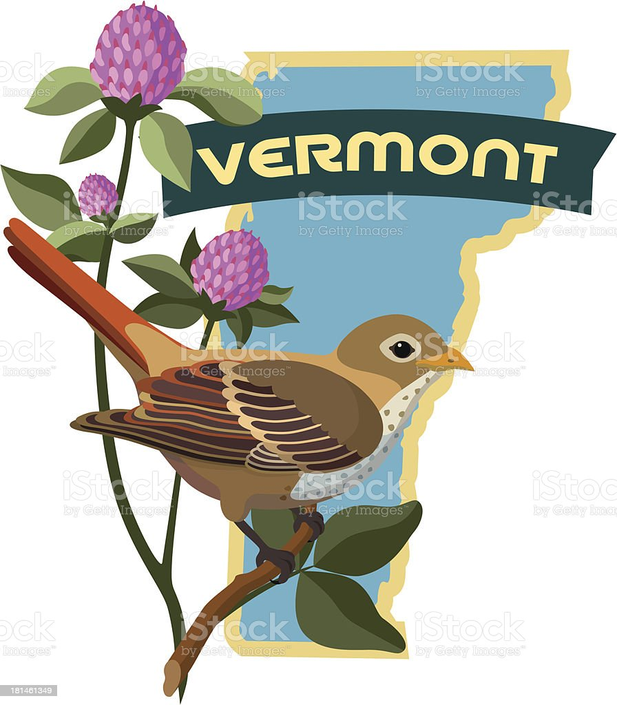 Vermont state bird and flower royalty-free stock vector art
