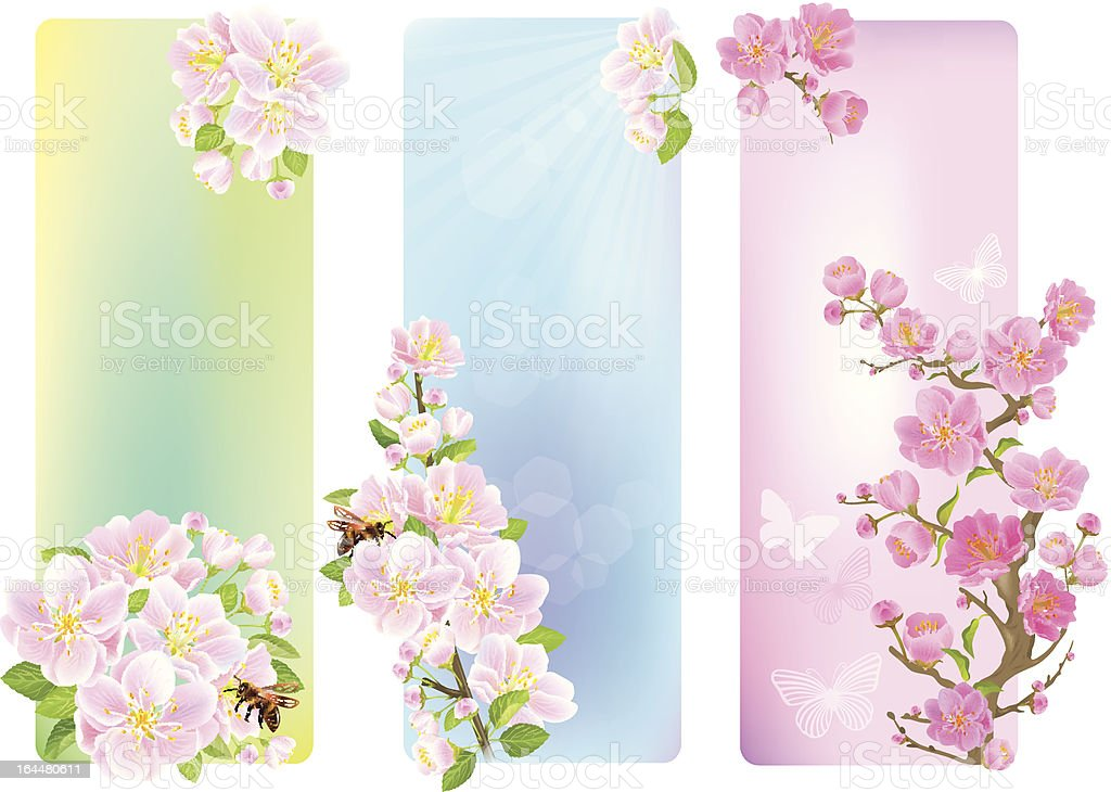 Vertical banners with a blossoming branch royalty-free stock vector art