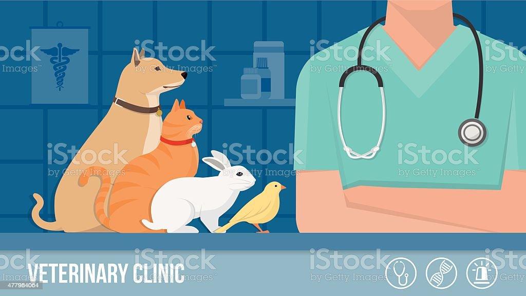 Vet clinic banner vector art illustration