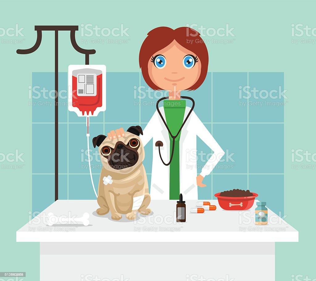 Veterinarian. Vetor flat illustration vector art illustration
