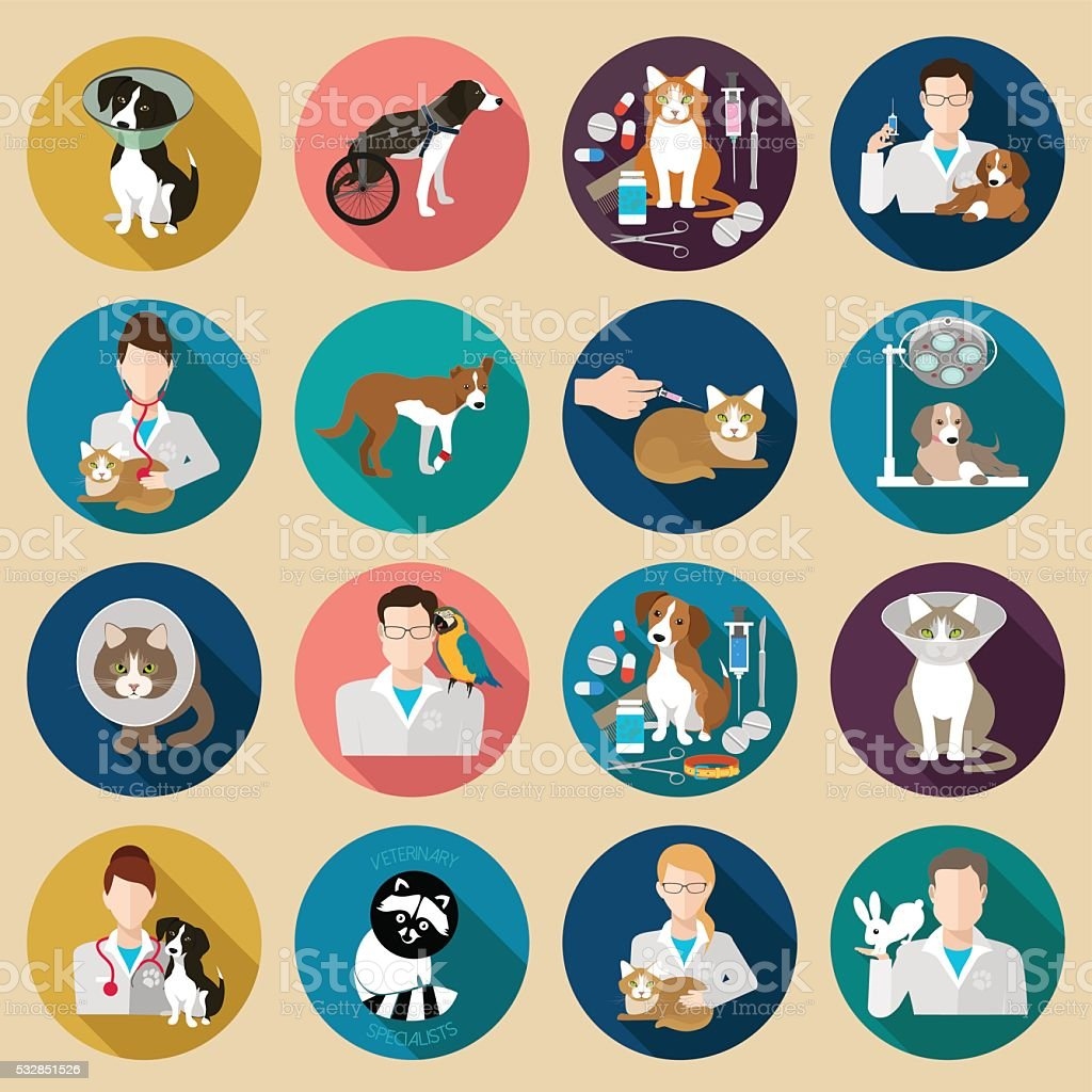 Veterinary icon flat set.  Vet clinic, pets and doctor vector art illustration
