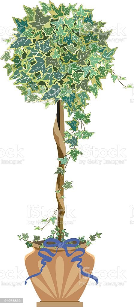 Victoria Style Ivy Topiary in Decorative Clay Flower Pot vector art illustration