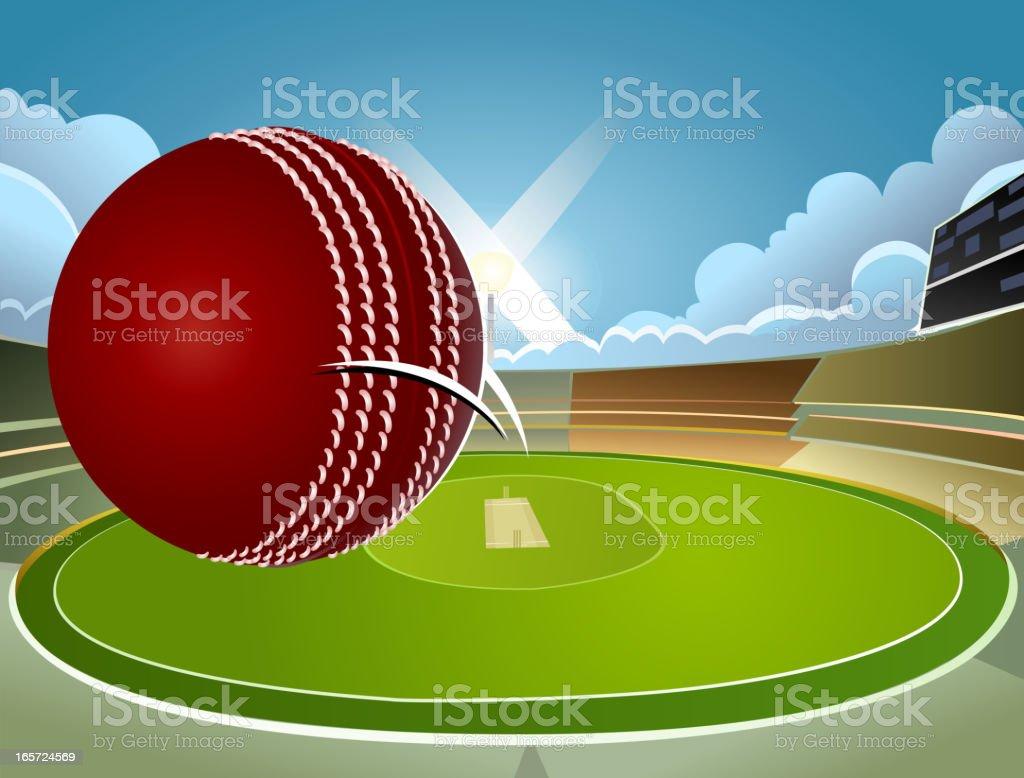 Victory - Cricket Background vector art illustration