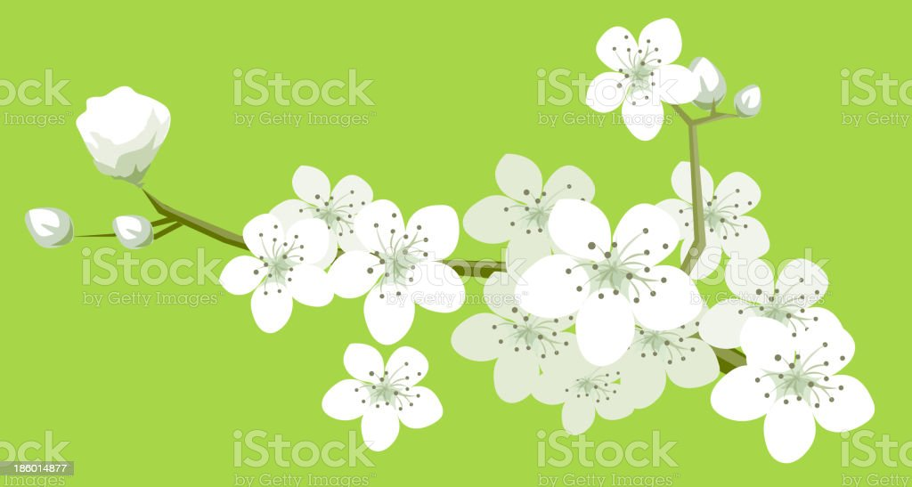 view of flowers royalty-free stock vector art