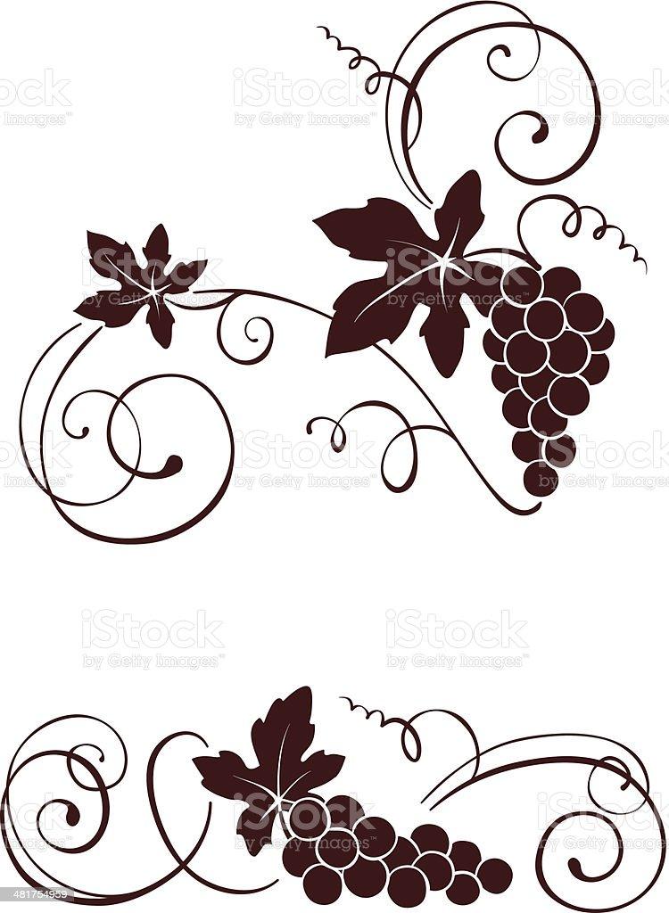Vine with swirls vector art illustration