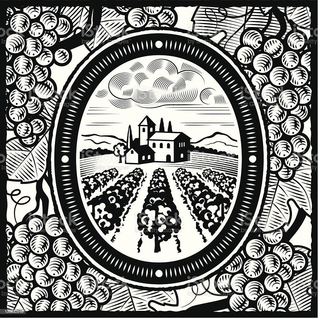 Vineyard black and white royalty-free stock vector art