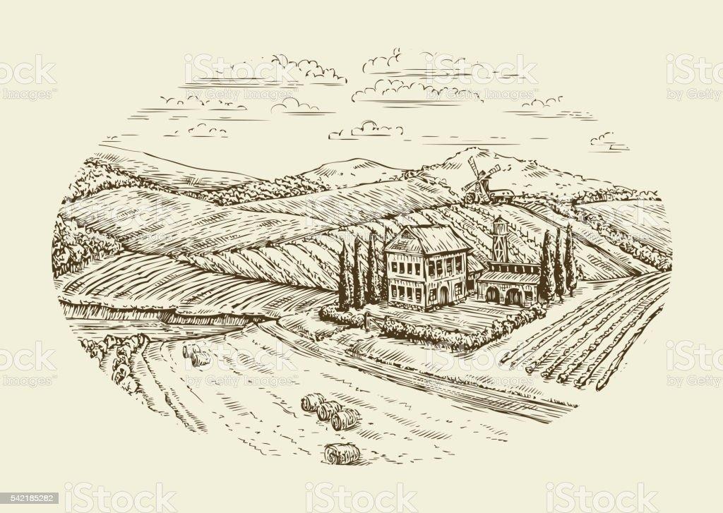 Vineyard landscape. Hand drawn vintage sketch agriculture, farming, farm vector art illustration
