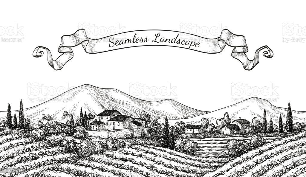 Vineyard seamless landscape. Vine sketch isolated on white. Hand drawn vector illustration. vector art illustration