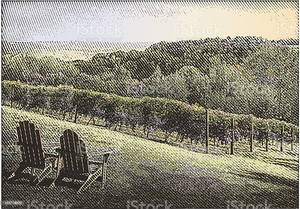 Vineyard With Chairs vector art illustration