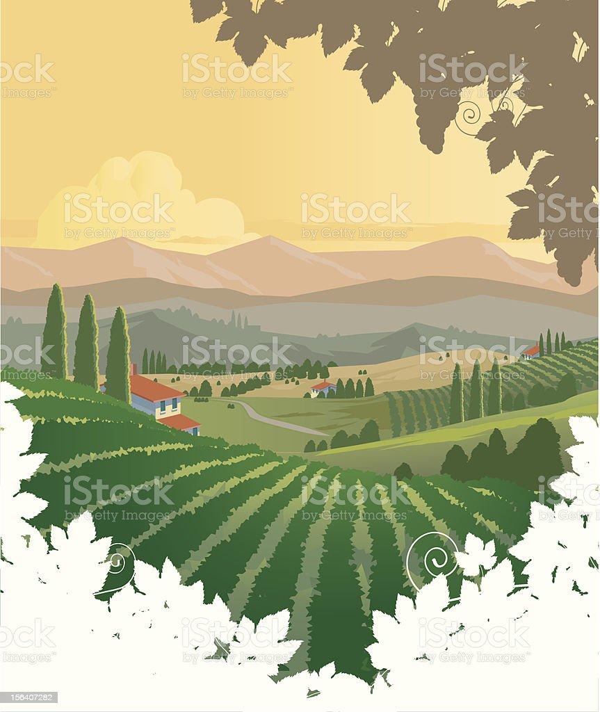 Vineyards Panorama vector art illustration