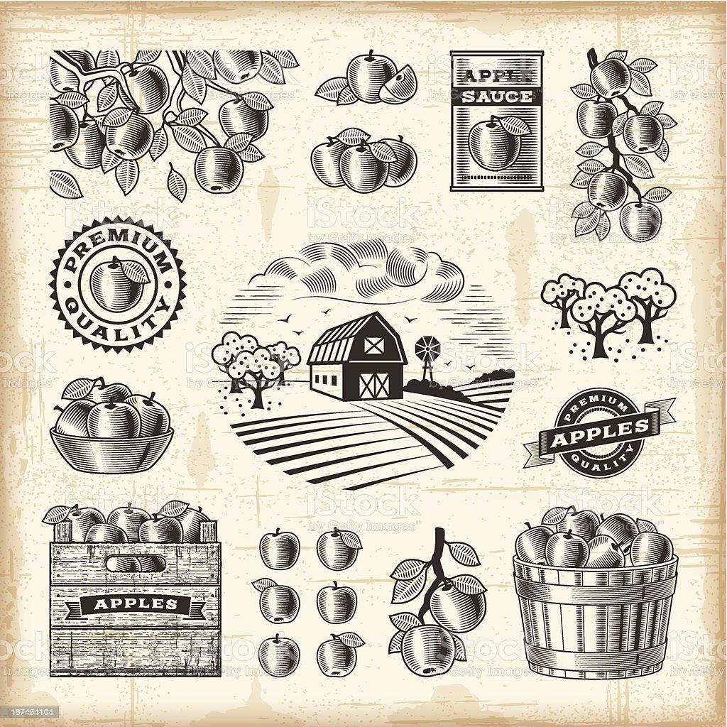 Vintage apple harvest set vector art illustration