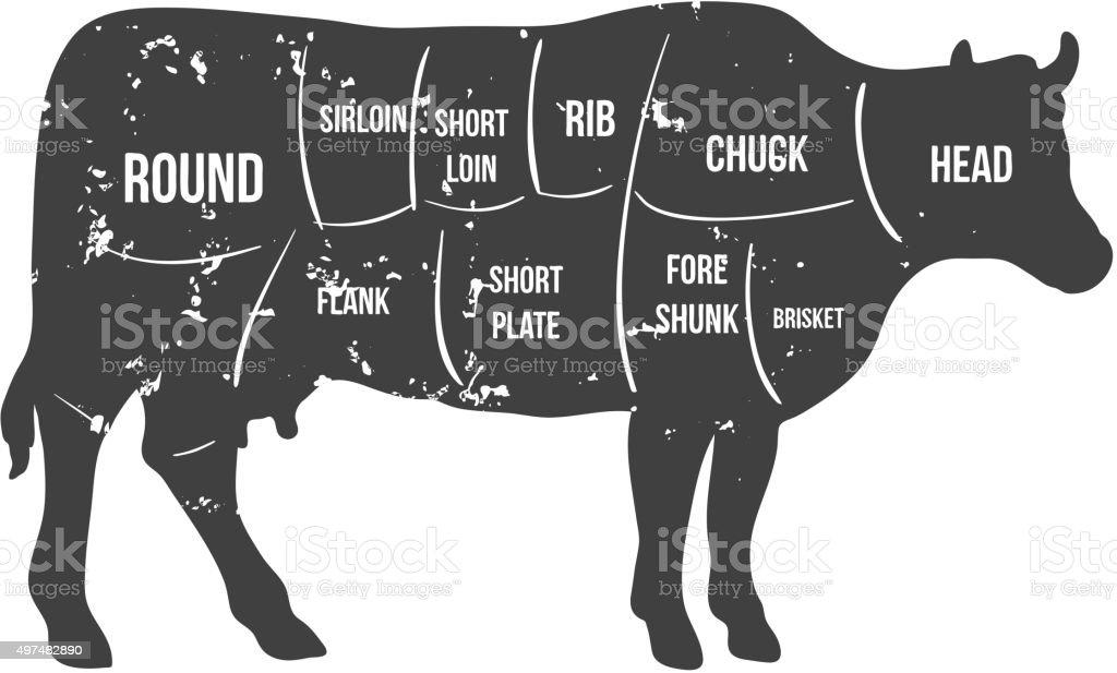 Vintage butcher cuts of beef diagram vector vector art illustration