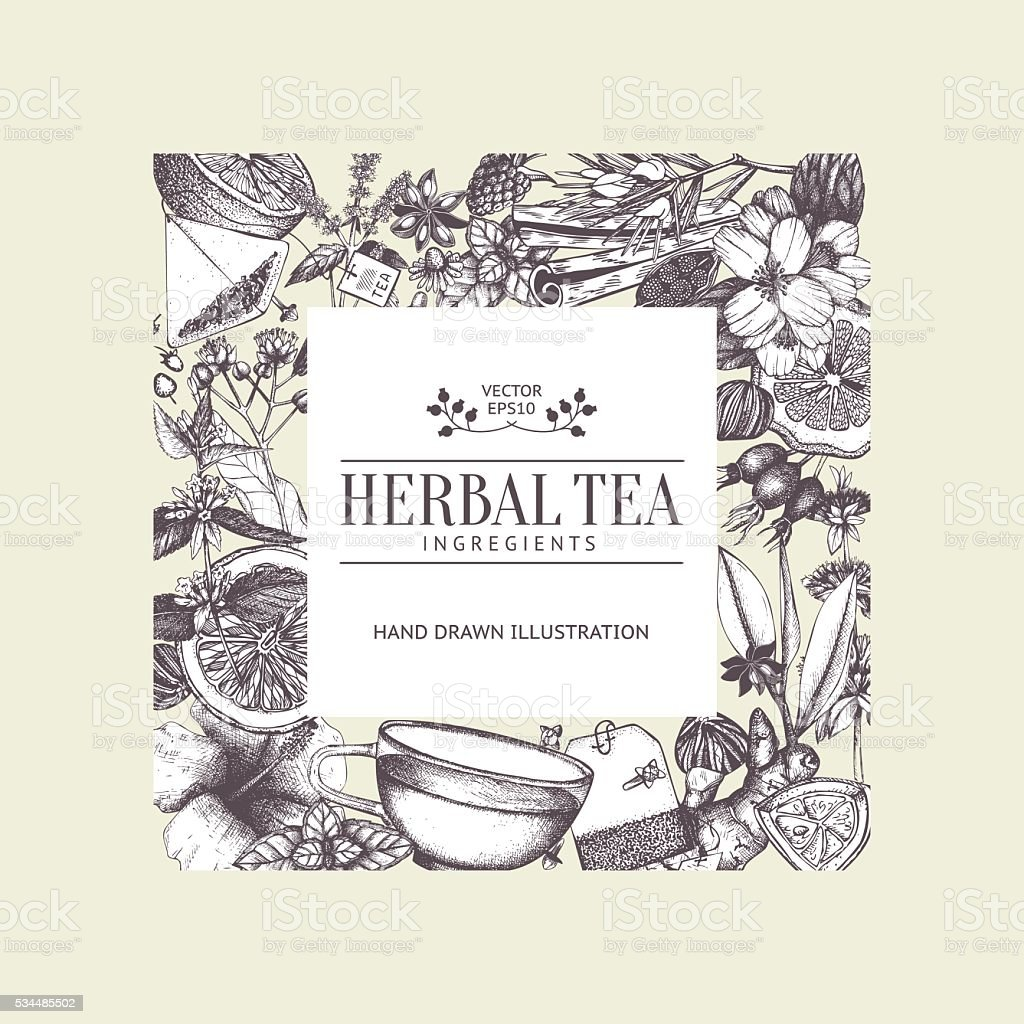 Vintage card design with hand drawn tea sketch. vector art illustration