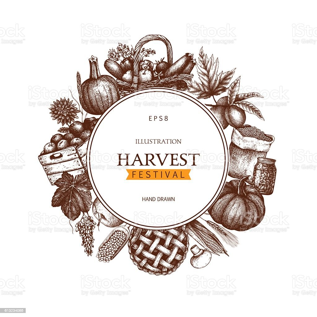 Vintage design with hand drawn harvest sketch. vector art illustration