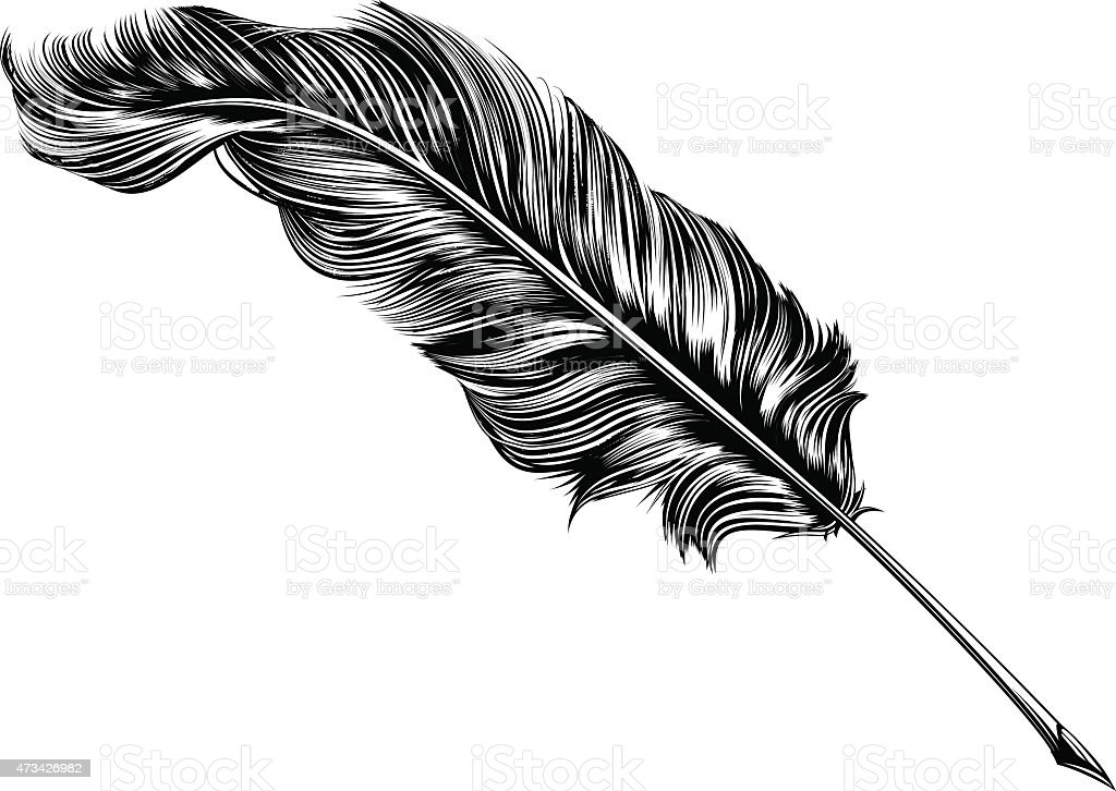 Vintage feather quill pen illustration vector art illustration