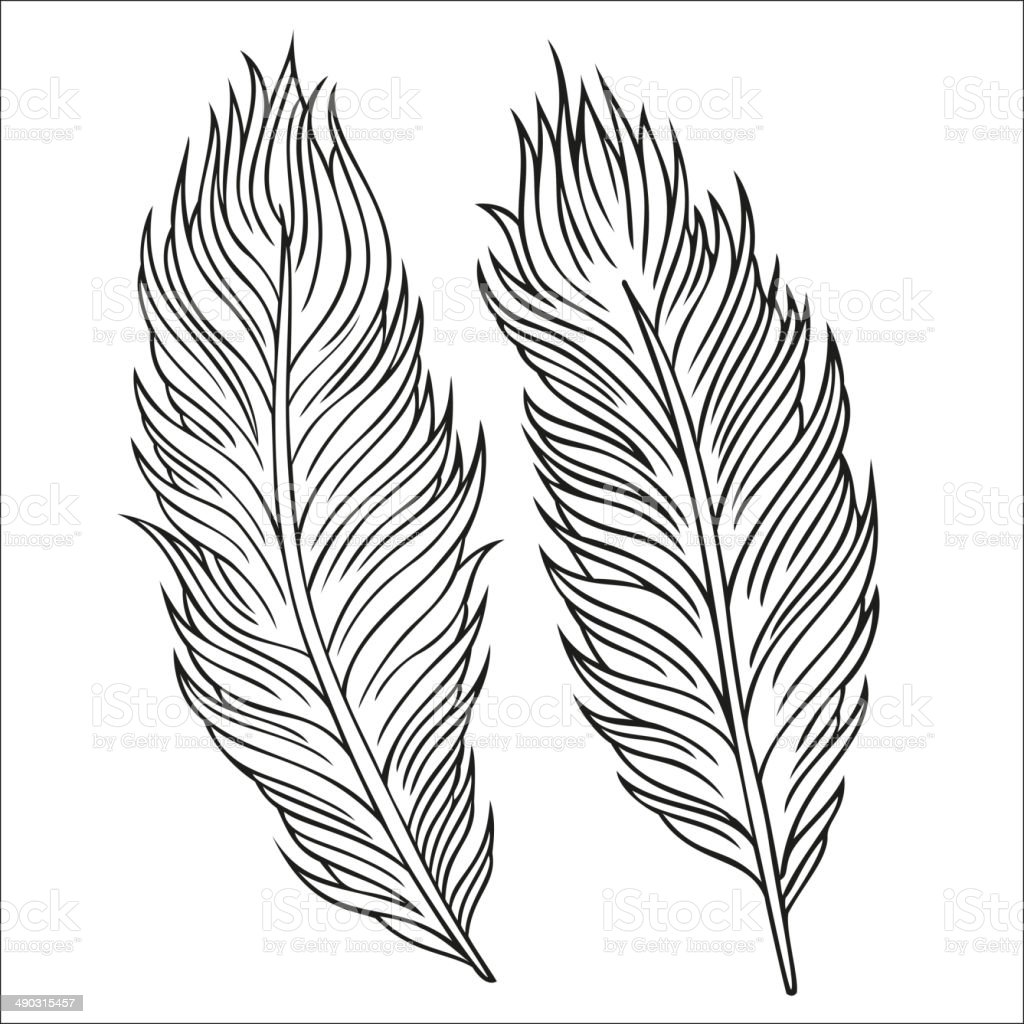 Vintage Feather vector set royalty-free stock vector art