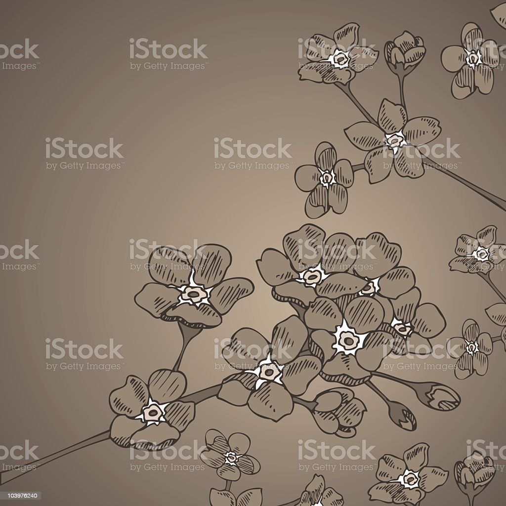 Vintage Forget-Me-Nots royalty-free stock vector art