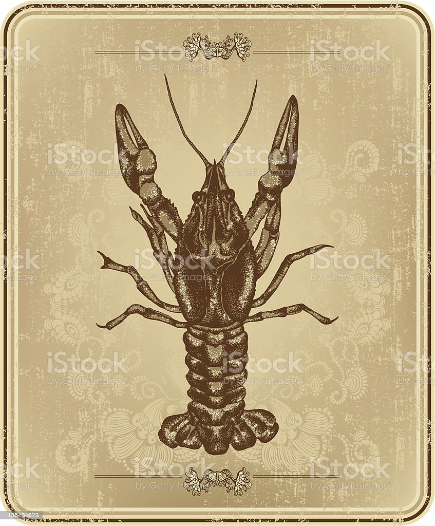 Vintage frame with crayfish, hand drawing vector art illustration