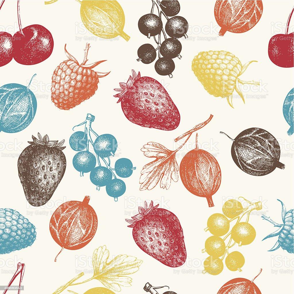 Vintage fruit vector