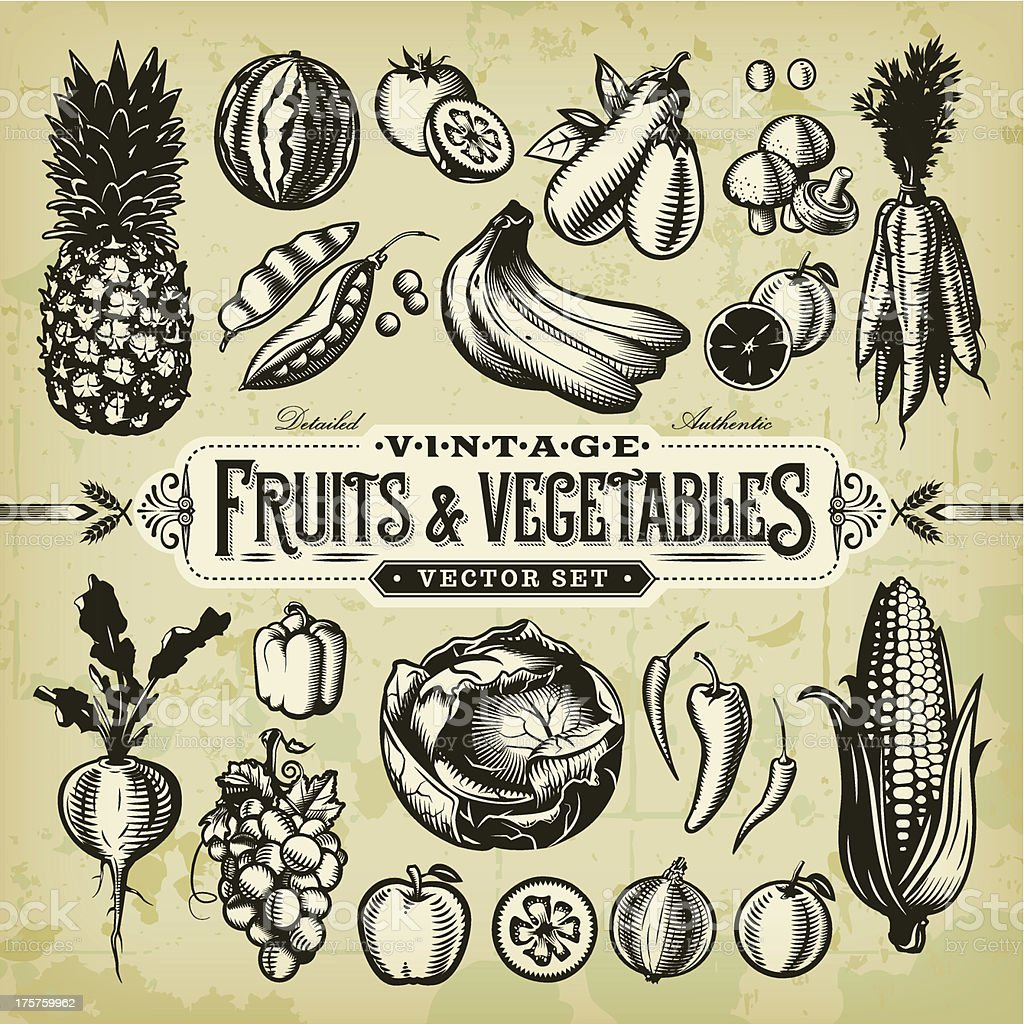 Vintage Fruits & Vegetables Set vector art illustration