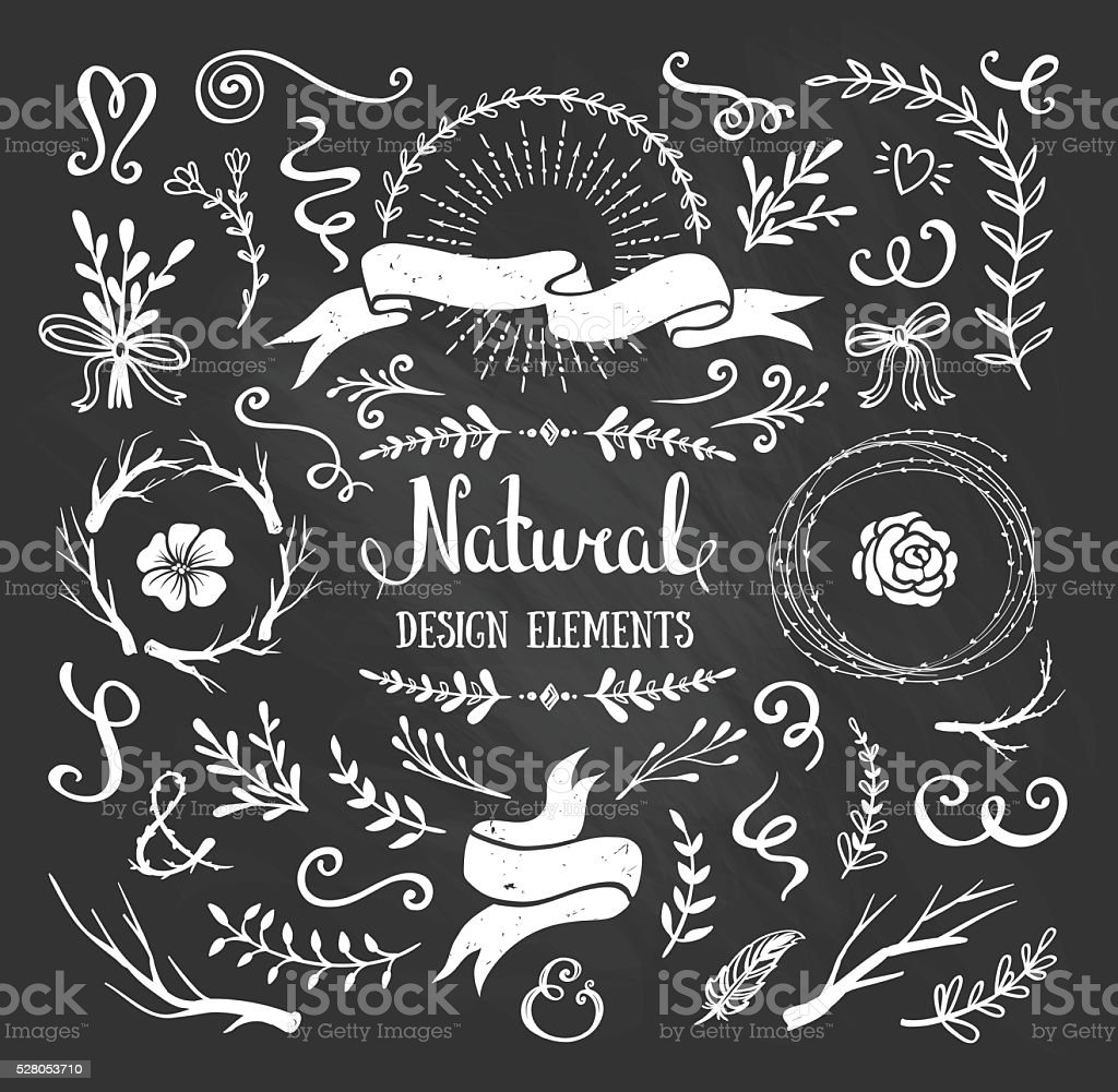 Vintage graphic set of flowers, branches, leafs, rustic design elements. vector art illustration