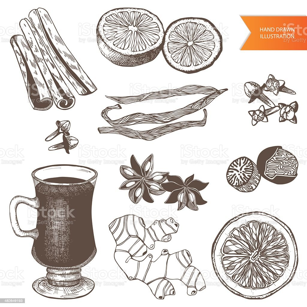 vintage hand drawn mulled wine and spices illustrations vector art illustration