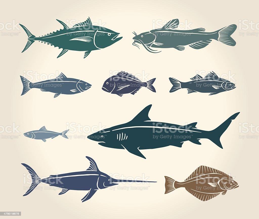 Vintage illustration of fish vector art illustration