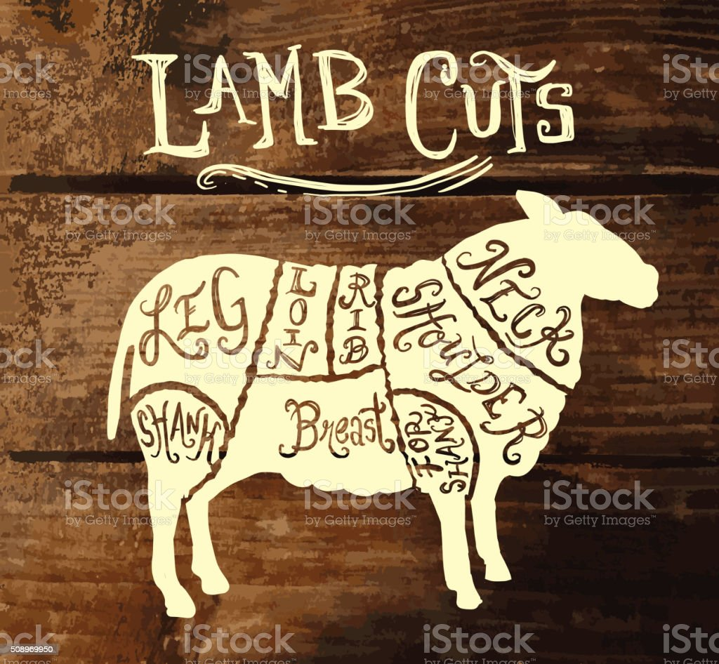 Vintage lamb sheep mutton cuts butcher diagram on textured background vector art illustration