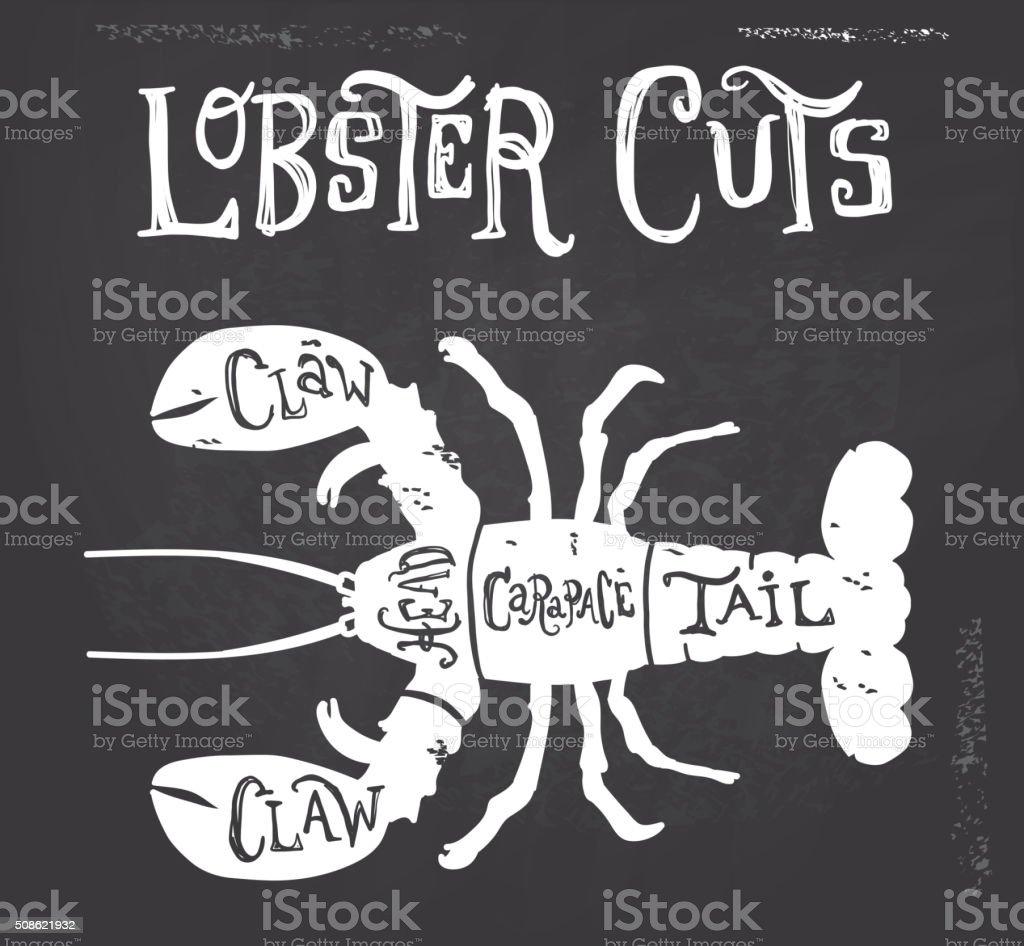 Vintage lobster meat cuts butcher diagram vector art illustration