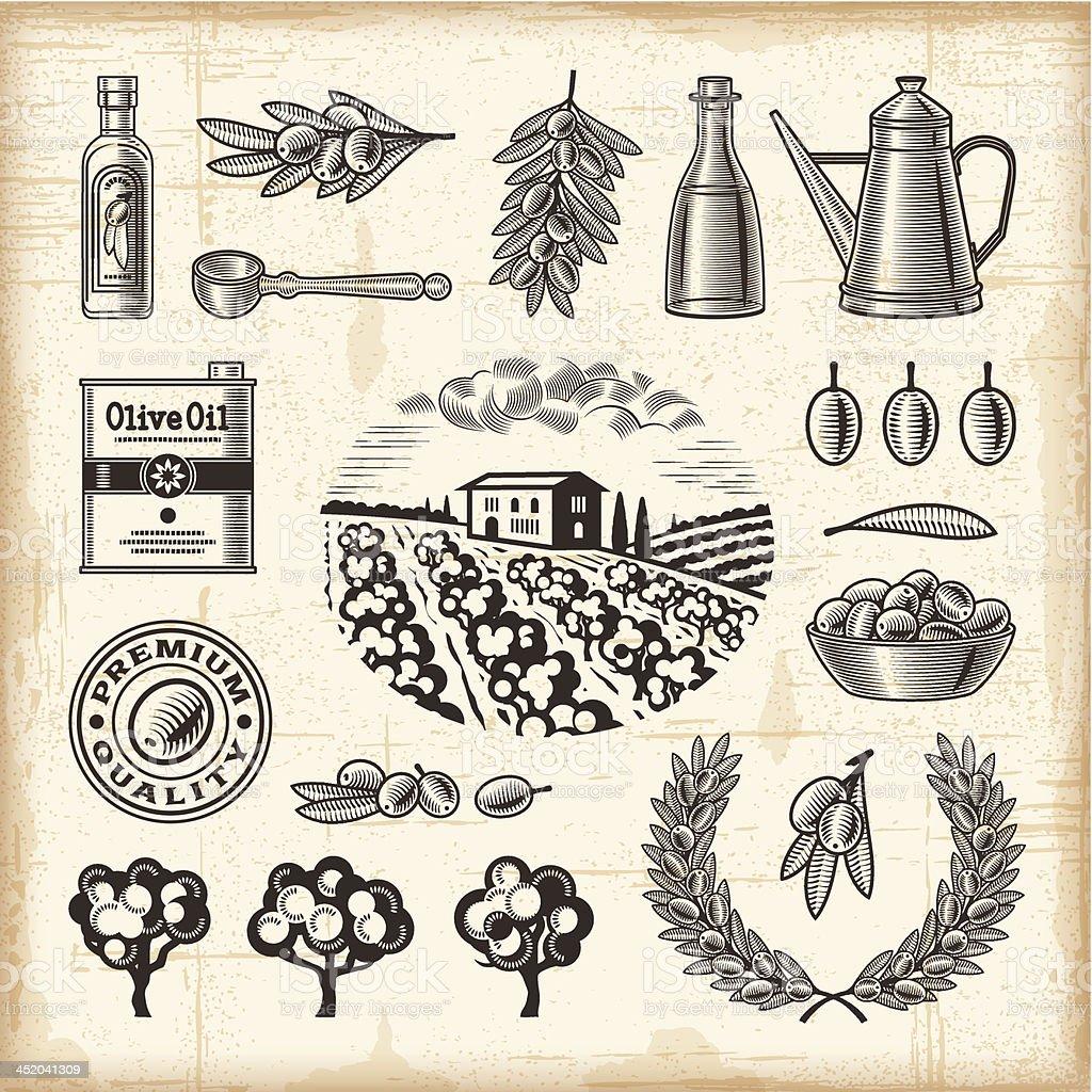 Vintage olive harvest set royalty-free stock vector art