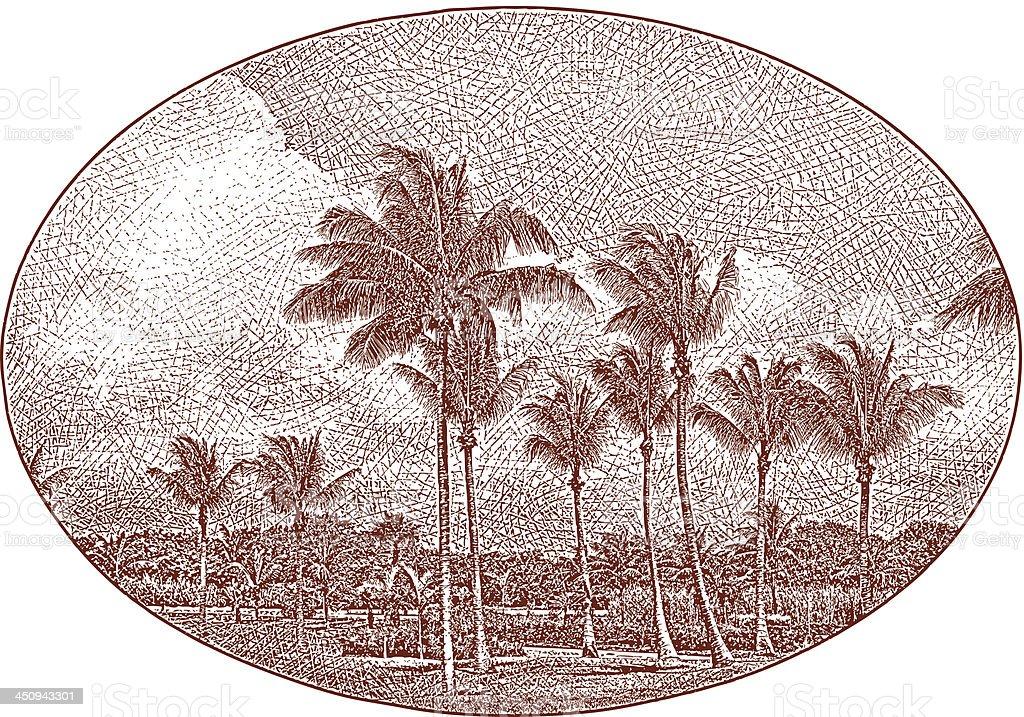 Vintage Palm Trees Landscape royalty-free stock vector art