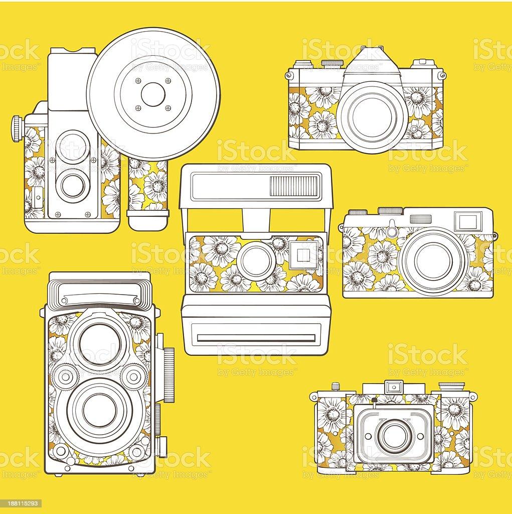 Câmeras foto Vintage conjunto com estampa floral. vetor e ilustração royalty-free royalty-free
