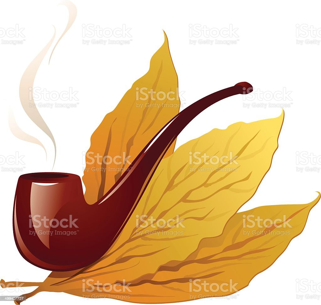 Vintage pipe closeup and isolated in white with three tobacco vector art illustration