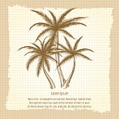 Vintage poster with palm tree