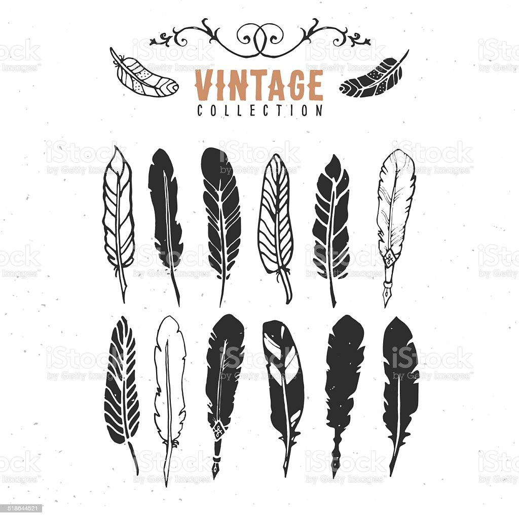 Vintage retro old nib pen feather ink collection. vector art illustration