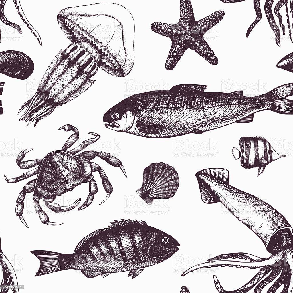 Vintage sea life pattern. vector art illustration