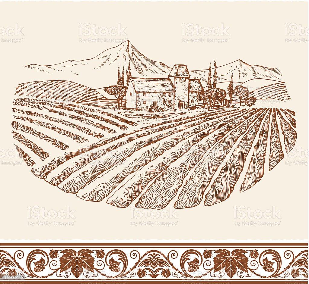 Vintage wine labels vector art illustration