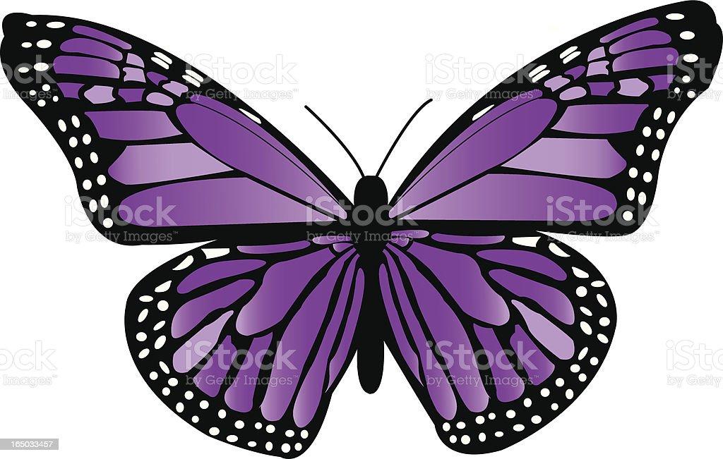 Violet Monarch Butterfly vector art illustration
