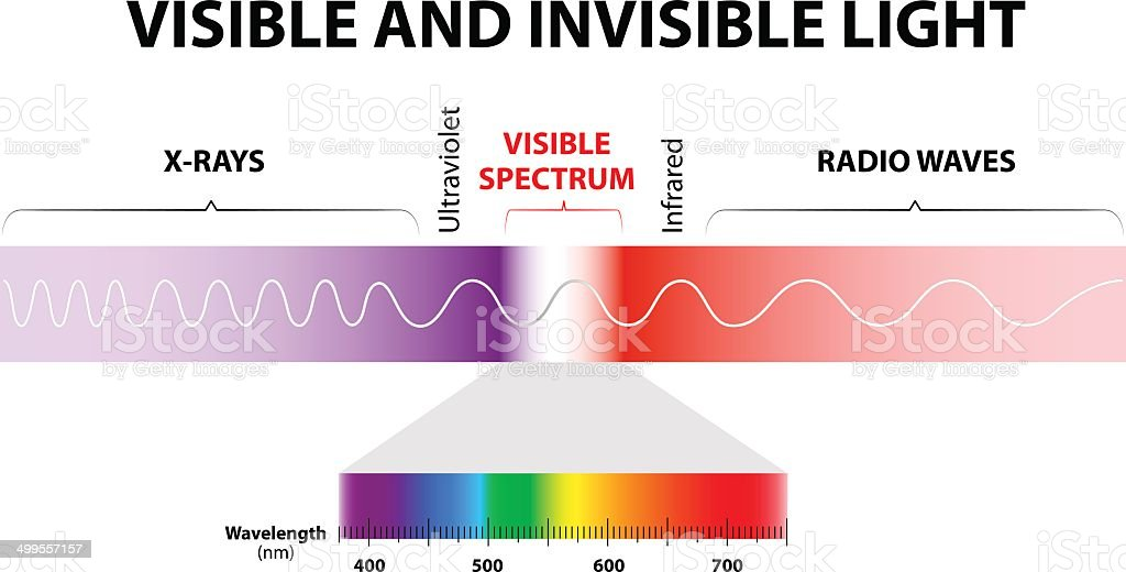 Visible and invisible light vector art illustration