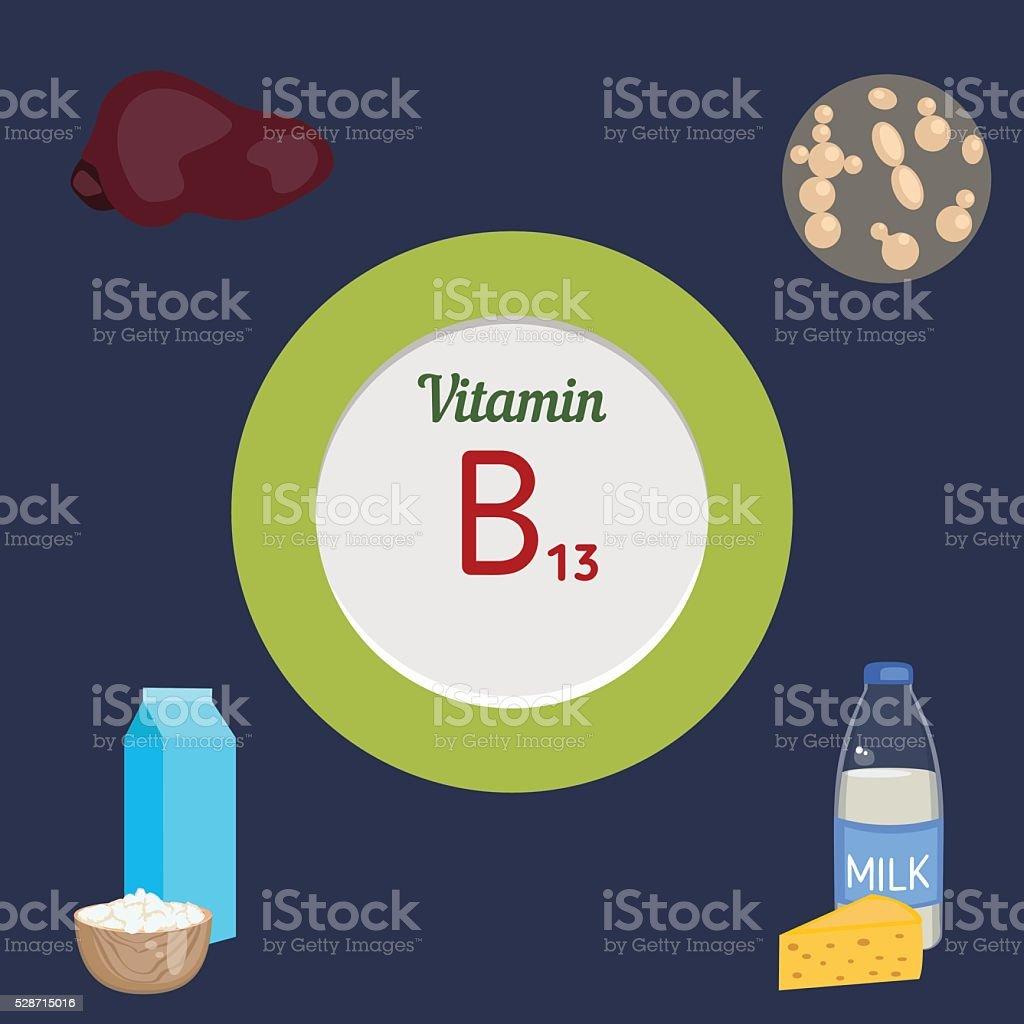Vitamin B13 infographic vector art illustration