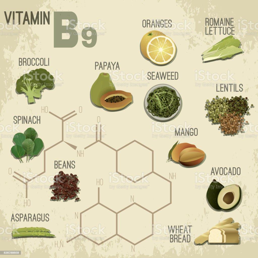 Vitamin B9 Food vector art illustration