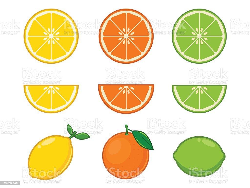 Vitamin C fruits vector art illustration