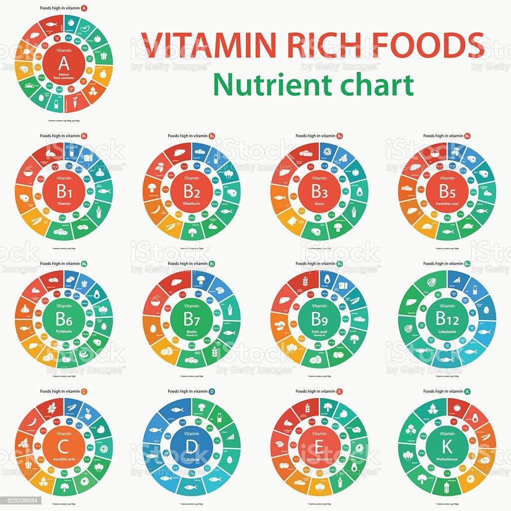 Vitamin rich foods. Nutrient chart. Foods high in vitamins. vector art illustration