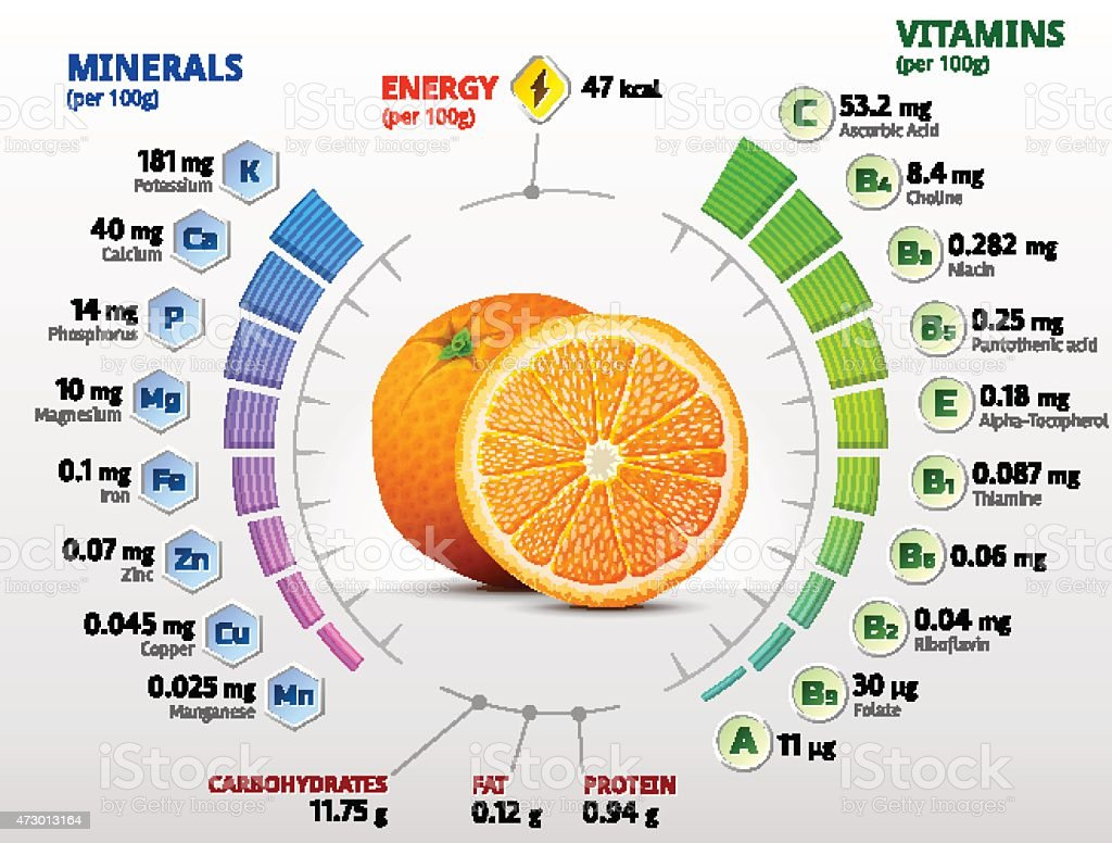 Vitamins and minerals of orange fruit vector art illustration